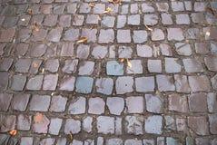 Old cobblestone road Royalty Free Stock Photos