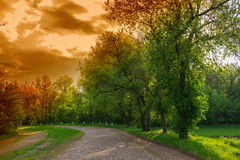 Old cobblestone road in a park Royalty Free Stock Photos