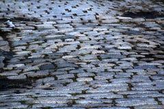 Old Cobblestone Street. Lots of cobblestone streets in old Philadelphia Stock Photo