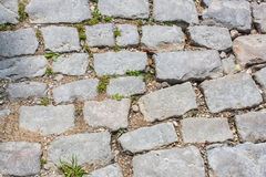 Old cobblestones Stock Photos