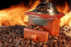 Old Coffee Grinder and Beans Royalty Free Stock Photo