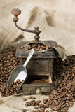 Old coffee grinder with coffee beans. Antique coffee grinder filled with coffee beans Royalty Free Stock Photos
