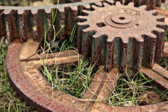 Old cogs. And gears lay rusting in the grass Royalty Free Stock Photos