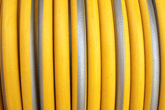 Old Coiled hose in Agriculture. Old Coiled hose in Agriculture royalty free stock images