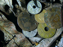 Old coins on autumn leaves Royalty Free Stock Photography