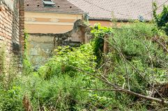 Old collapsed ruin and abandoned house in the jungle overgrown with green plants after ages Royalty Free Stock Photos