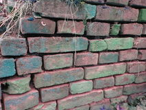 Old color wall of bricks Stock Photography