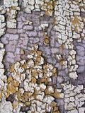 Old colored wooden surface Royalty Free Stock Photography