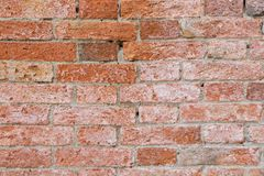 Old colorful brick wall texture background. Wall background for designers. royalty free stock image