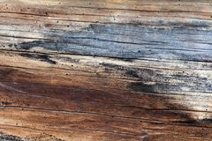 Old colorful wood texture background. Royalty Free Stock Photo
