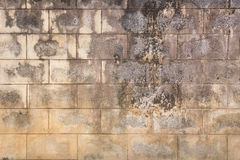 Old concrete block wall background Royalty Free Stock Photography