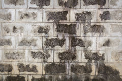 Old concrete block wall background Stock Photos