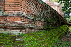 Old concrete Brick Wall with Moss. Royalty Free Stock Photography