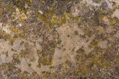 Old concrete with decal Royalty Free Stock Photos