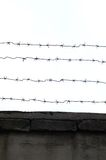 Old Concrete Fence with Barbed Wire Royalty Free Stock Images