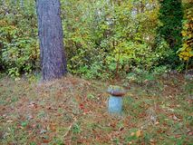 Old concrete figure for garden. Large mushroom royalty free stock photo