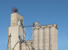 Old concrete grain elevator complex . Large old concrete grain elevator complex with one main building and several silos.   against a blue sky Royalty Free Stock Images