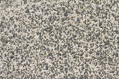 Old concrete paving slab Stock Photo