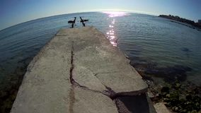 Old concrete pier. stock footage