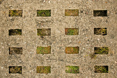 Old concrete road slab. With plants Stock Photography