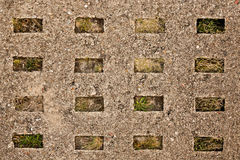 Old concrete road slab. With plants Stock Photo