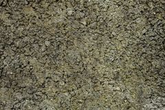 Old concrete grunge stone wall texture. Old concrete stone wall, grunge natural grainy texture for background, panorama Stock Photos