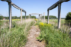 Old concrete structures. In the green grass Royalty Free Stock Photos