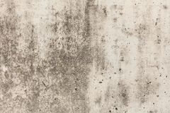 Old concrete wall. Copy space for text.  royalty free stock image