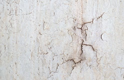 Old concrete wall. Stock Photo