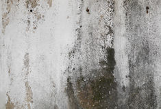 Old concrete wall with grunge texture Royalty Free Stock Images