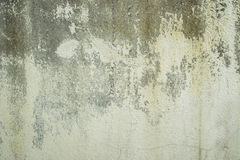 Old concrete wall with peeling paint. At outdoor Stock Image