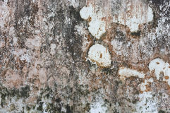 Old concrete wall stains Stock Photo