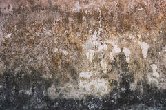 Old concrete wall stains Stock Images