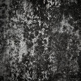 Old concrete wall Royalty Free Stock Image