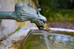 Old Copper Faucet. In the form of a dragon's head Royalty Free Stock Image