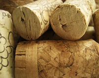 Old Corks. Closeop of old, used corks Stock Images