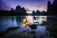 Old cormorant fisherman Royalty Free Stock Images