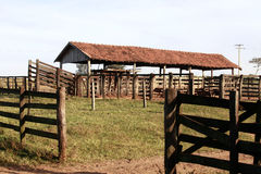 Old corral. View of old corral on farm in brazil Stock Photo
