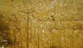 Old corroded concrete wall with stains and metal bars Royalty Free Stock Photo