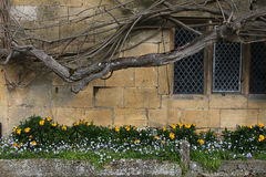 Old Cotswold Stone Exterior Royalty Free Stock Photos