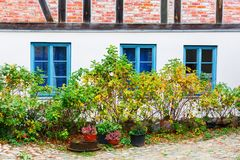 Old cottage with autumnal dogroses and pot plants. Picture of an old cottage with autumnal dogroses and pot plants Stock Images