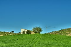 Old Cottage on a Hill of Wheat, Caltanissetta, Sicily, Italy, Europe stock image
