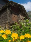 Old Cottage Hut in Summer stock images