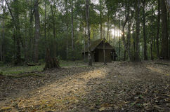 The old cottage in mystery forest. The old cottage in forest for mystery concept Royalty Free Stock Photography