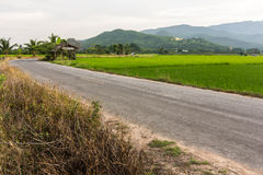 Old cottage in the rice fields with mountain Royalty Free Stock Photos