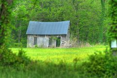 Old Country Cabin. Abandoned cabin framed in the green of spring Royalty Free Stock Photo