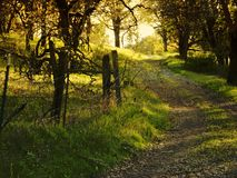 Old Country Dirt Road. Old Dark Country Dirt Road stock images