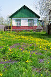 Old country house. Old wooden country house in spring Stock Image