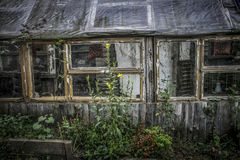 Old country house. An old, overgrown house in the country Stock Image