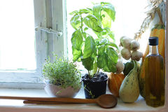 Old country kitchen window with herbs stock photo